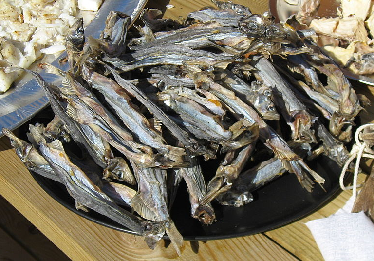 Greenland air-dried Capelin - ammasat. (Kim Hansen: Wikimedia Commons).