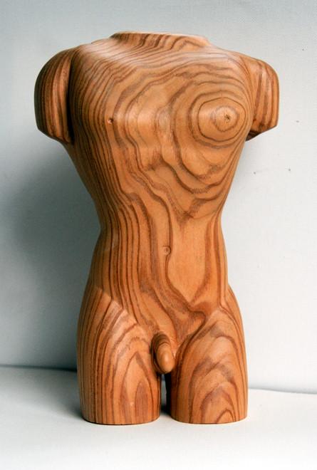 Male Torso 2009 (Ash) (24x15x9)