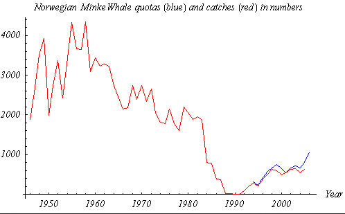 Norwegian Minke Whale Quotas (blue line, 1994–2006) and Catches (red line, 1946–2005) in Numbers (from official Norwegian statistics via Wikimedia Commons).