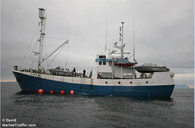 MS Havsel, the only boat to take part in the 2008 Norwegian seal hunt. It harvested 1,250 mainly Harp seal pups at the 'beater' (3 weeks +) stage with a total value of NOK 62,500 (about £6000) for a six week trip. (Photo (C) David - Marine Traffic.com).