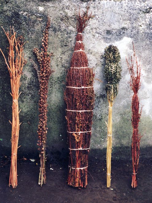 Elements of The Drying Room installation, Penzance Artist Led Projects 2010 (dry bracken, fox glove seedheads, dock seedheads)
