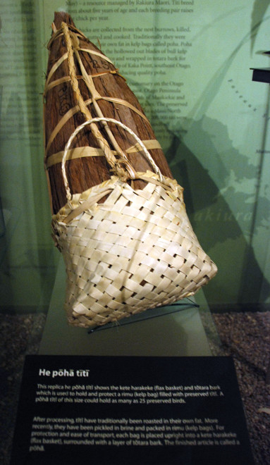 The elaborate method of storing muttonbirds - a kelp bag - poha - inside a bark bag inside a  flax basket. This package coould have held 25 preserved muttonbirds (Otago Museum, Dunedin)