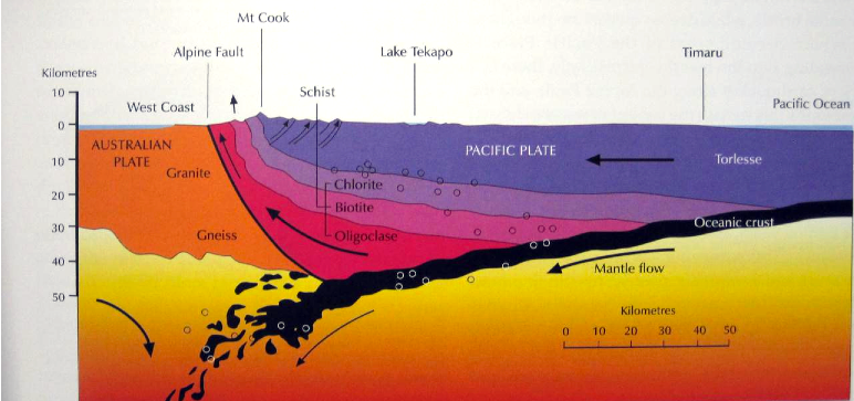 Cross section of the Southern Alps to scale on a line from Mt. Cook to Timaru (from Coates, G., The Rise and Fall of the Southern Alps, 2002)