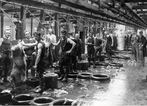 Workers in the Ocean Beach Freezing Works, Bluff in 1933 (Source: Te Ara: Southland).