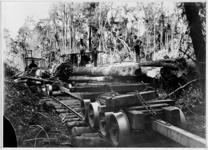 Logs being transported on Stuart and Chapman's bush tramway, Seddon Terrace, near Hokitika. A Davidson engine and winch are being used. Ref: 1/2-060422-F. Alexander Turnbull Library, Wellington, New Z