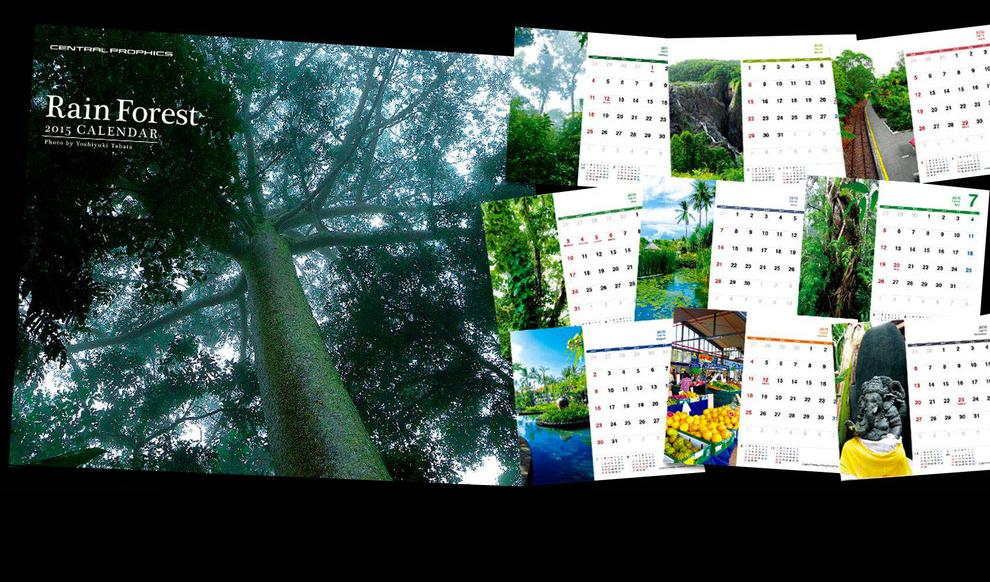 2015年度オリジナル卓上カレンダー「Rain Forest」というタイトルにて、鬱蒼とした木々や、みずみずしい植物、水辺やマーケットなど熱帯雨林地方の異国情緒溢れる風景を切り取りました。