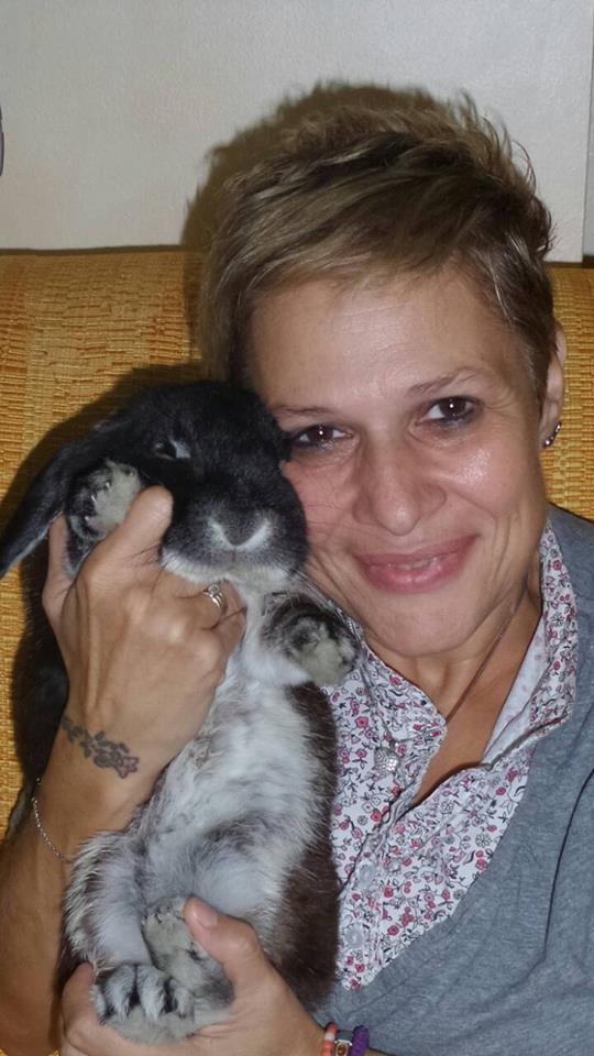Coniglio nano ariete giarra bianca Nero Roma  mini lop coniglietti da compagnia
