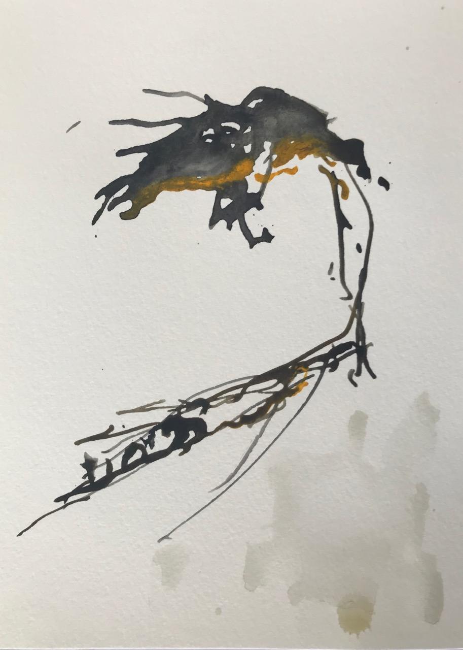 Kleine Enzyklopädie der Mittelmeerquallen Pt.1, Aquarell und Tusche auf Papier, 21 x 30 cm, 2018