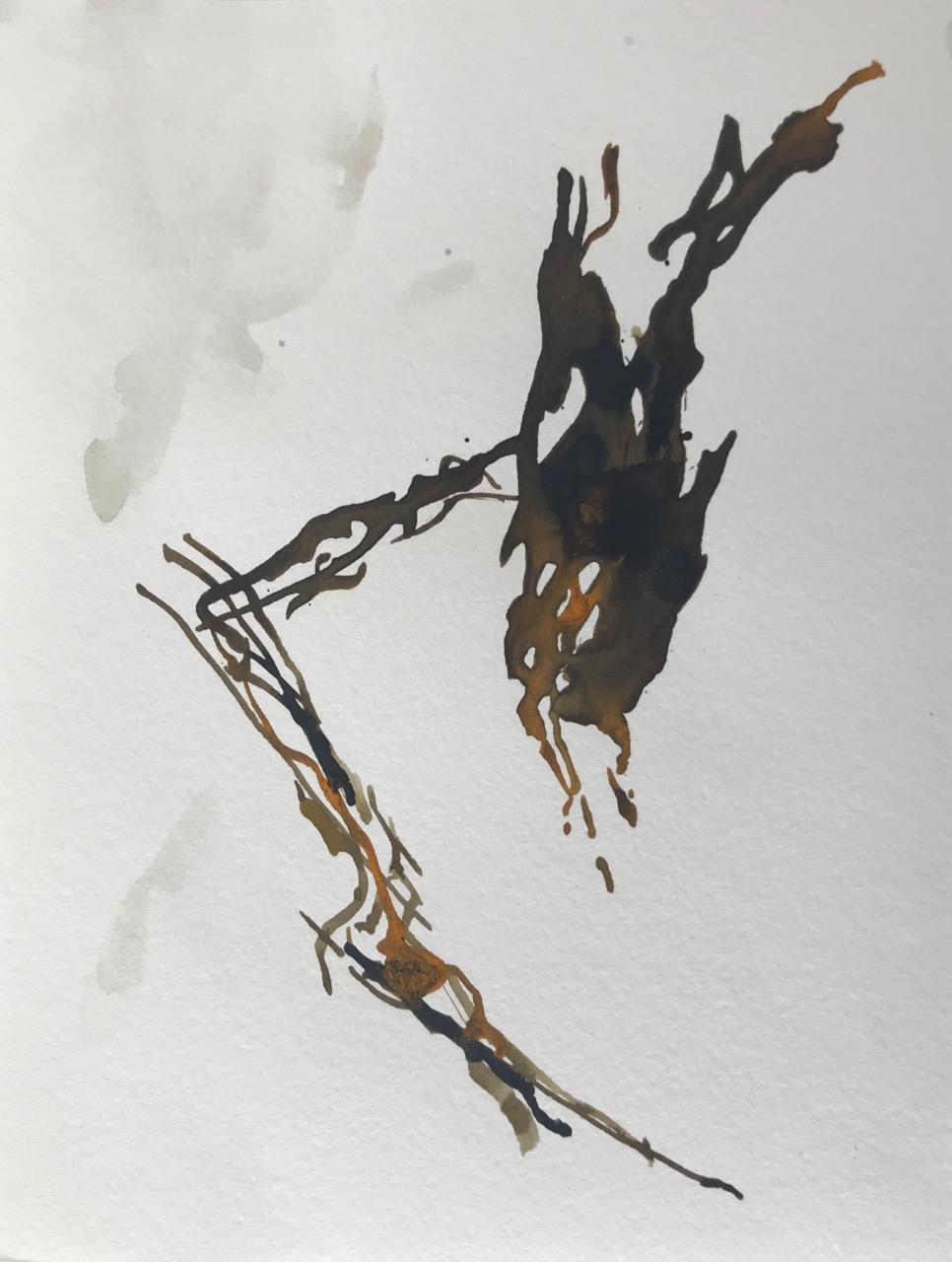 Kleine Enzyklopädie der Mittelmeerquallen Pt.2, Aquarell und Tusche auf Papier, 21 x 30 cm, 2018