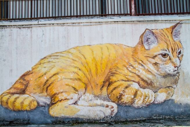 Фото дня 07.02.2015. Пинанг Малайзия. Настенные рисунки неизвестного автора. Рыжий Кот.