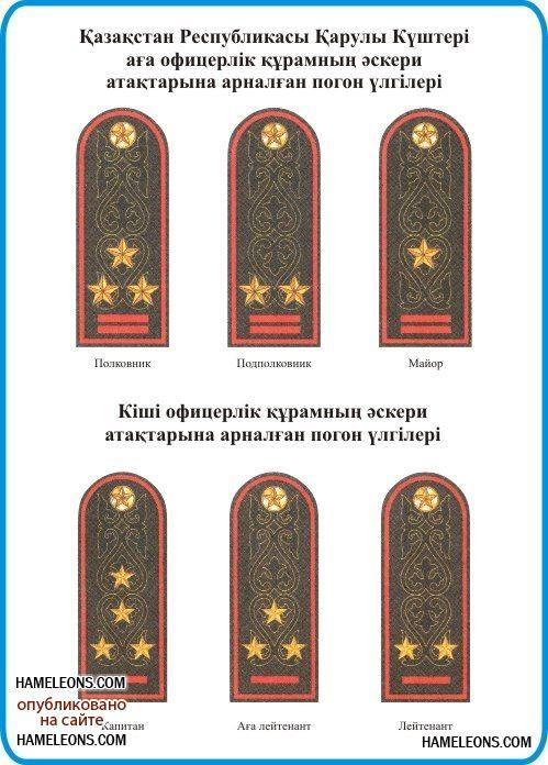 Погоны и звания в картинках казахстан полиция, картинки днем