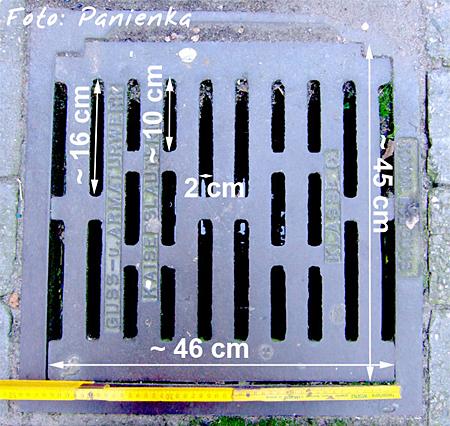Gully mit 2,0 cm Gitterabstand (Foto: Sandra Panienka)