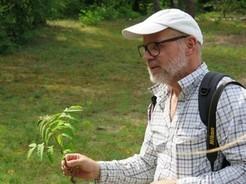 Rolf Borlinghaus, NABU Sinsheim und Botanische Arbeitsgemeinschaft Südwestdeutschland