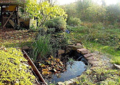 im natur und erlebnisgarten nabu heidelberg die. Black Bedroom Furniture Sets. Home Design Ideas
