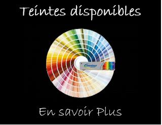 teintes disponibles - couleurs ral