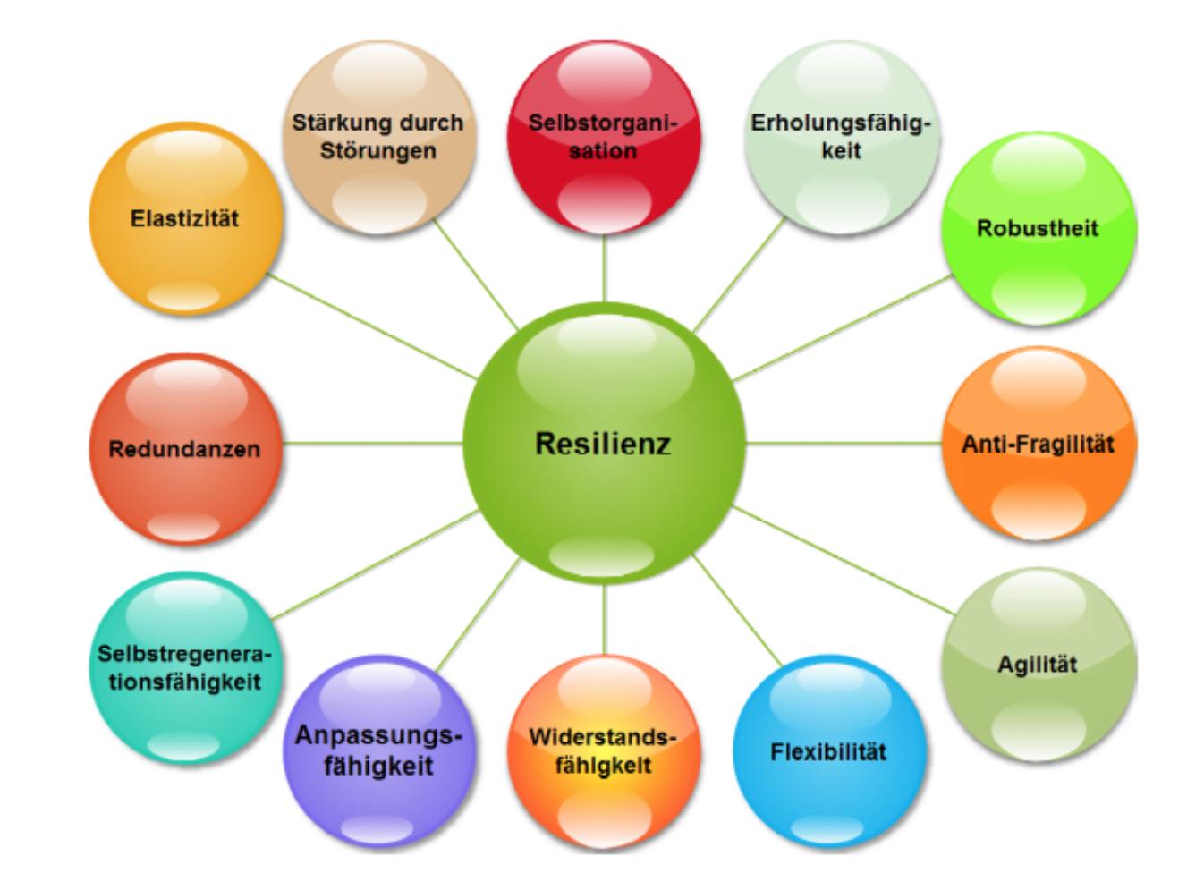 Resiliente Führungals Erfolgsfaktor für die Apotheke