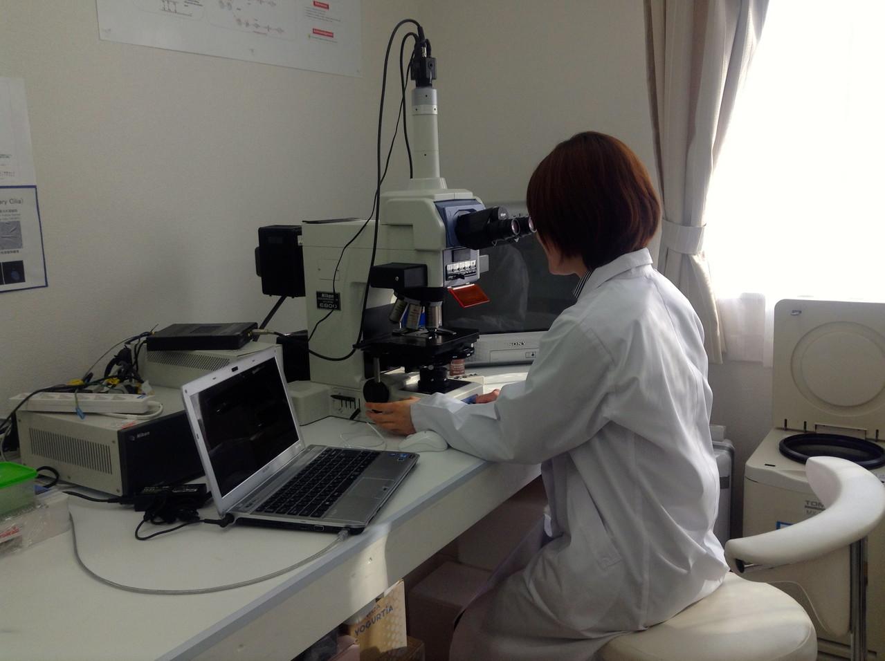 細胞内の可視化を初めてとらえた電子顕微鏡