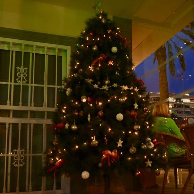 Am Weihnachtsbaume die Lichtlein brennen...