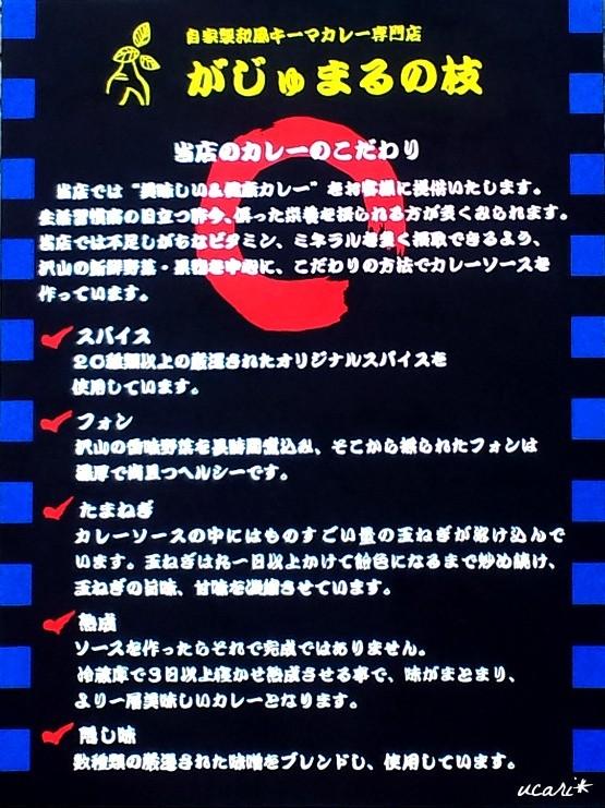 自家製和風キーマカレー専門店 がじゅまるの枝 新橋店 様 看板 (600mm × 450mm)