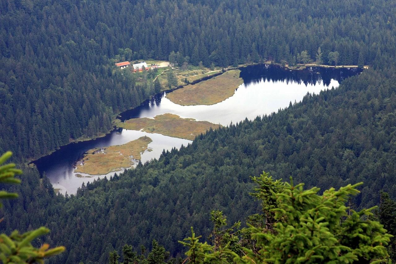 Der Kleine Arbersee mit den schwimmenden Inseln