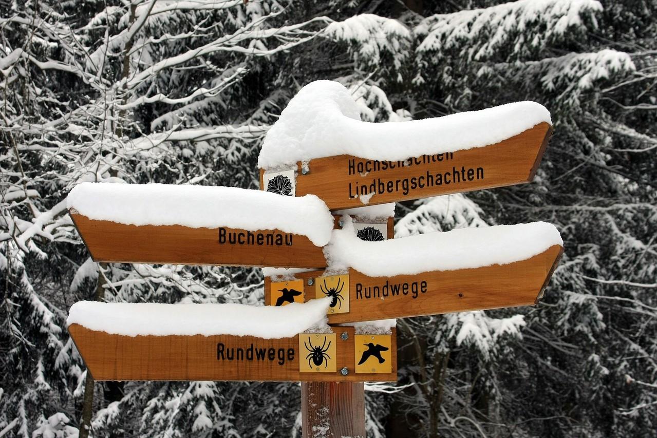 Durch den Winterwald auf den Lindbergschachten
