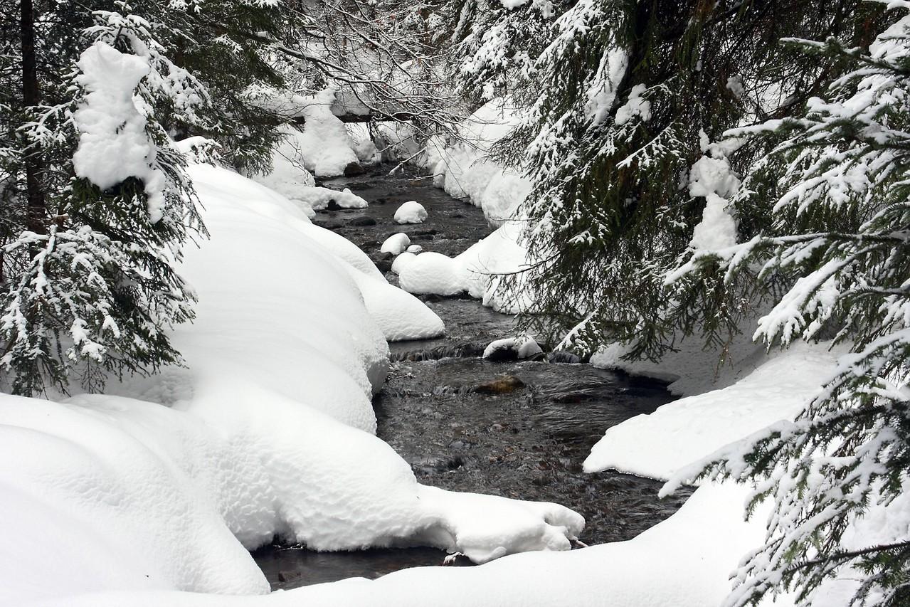 Die Flanitz in Winter