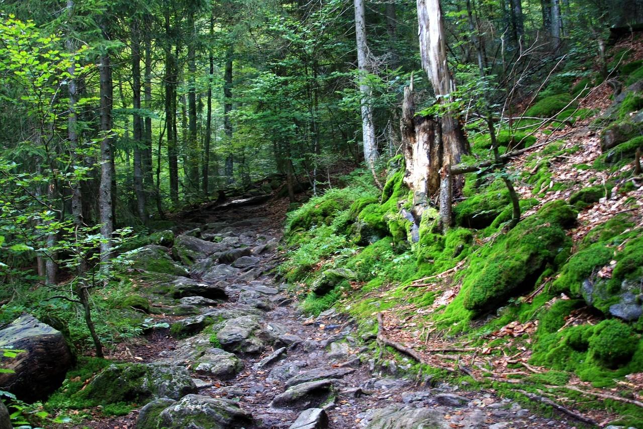 Wanderweg zu den Rieslochfällen