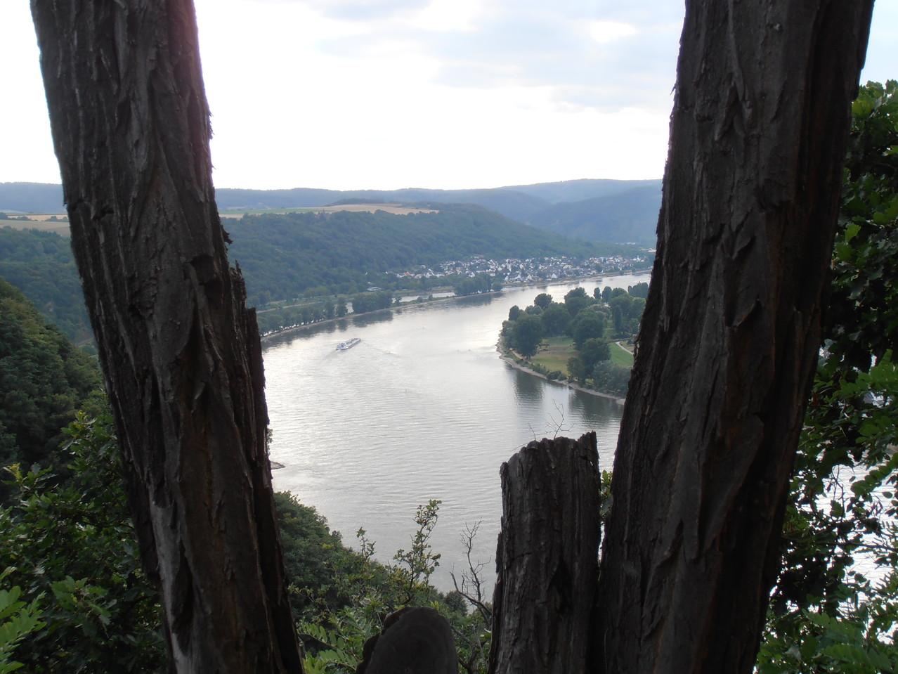 Den Rhein im Blick