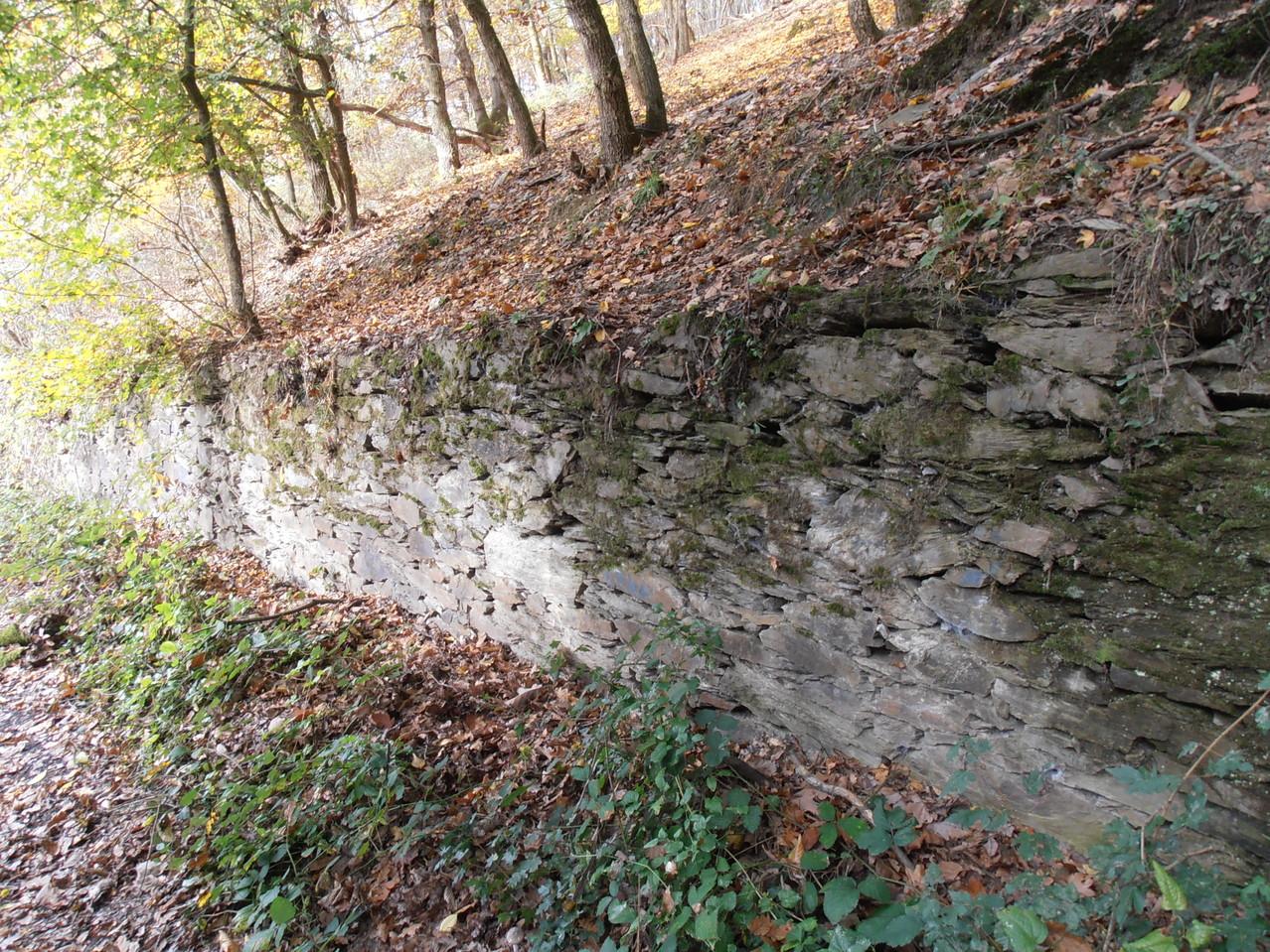 Typische Mauern im Rheintal