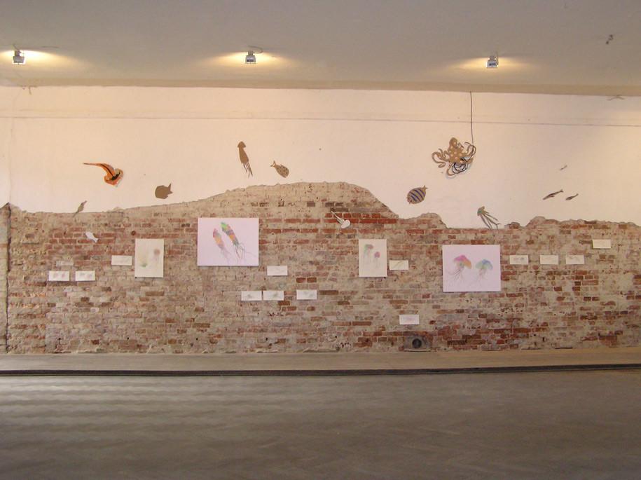 Mitteilung von Fische, in Werenzhain 2012
