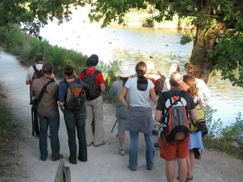 Le Teich, Vraies vacances sur le Bassin d'Arcachon - Visites guidées