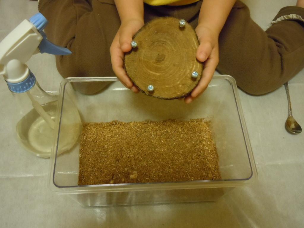 ペアリング用の特製エサ皿を入れる