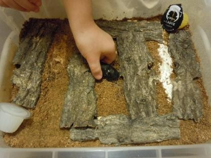 転倒防止の木皮を並べて1週間置いたものに 投入