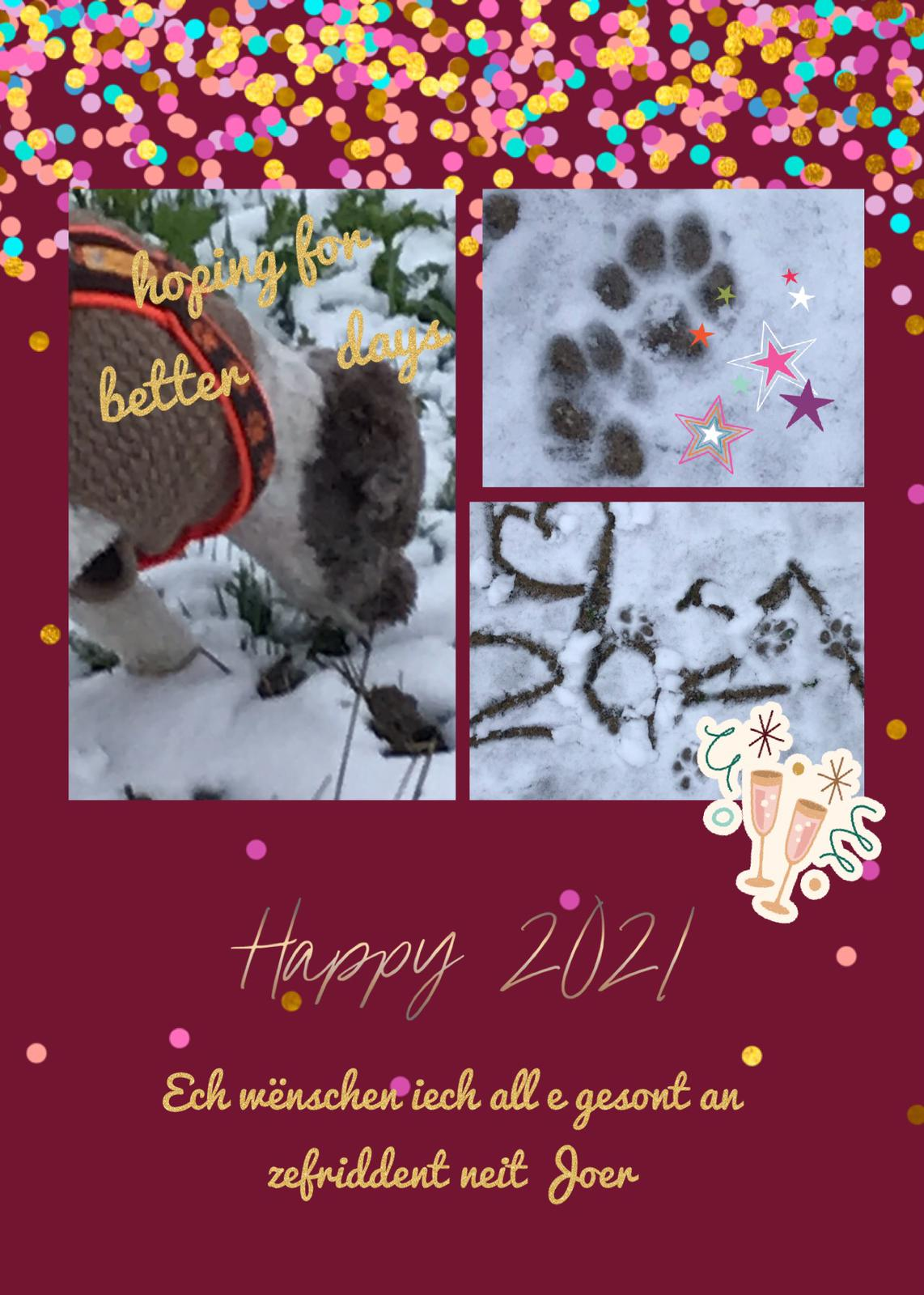 Happy new year wünschen Fina und Frauchen Joelle
