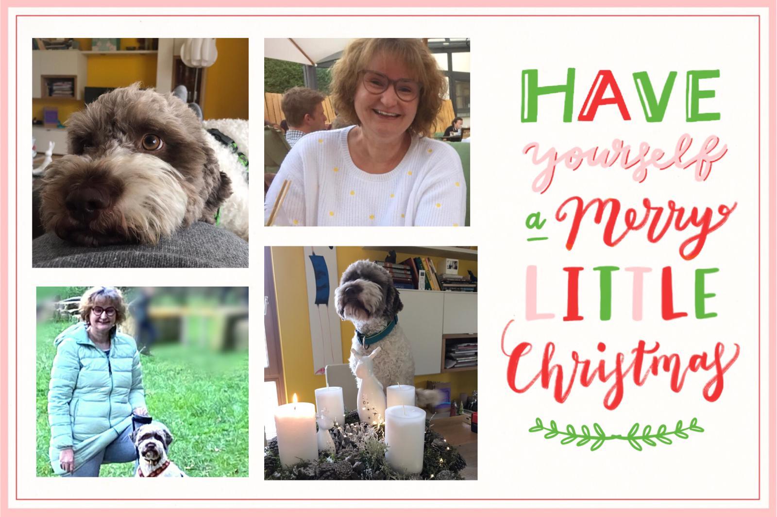 Frohe Weihnachten wünschen Fina und Joelle