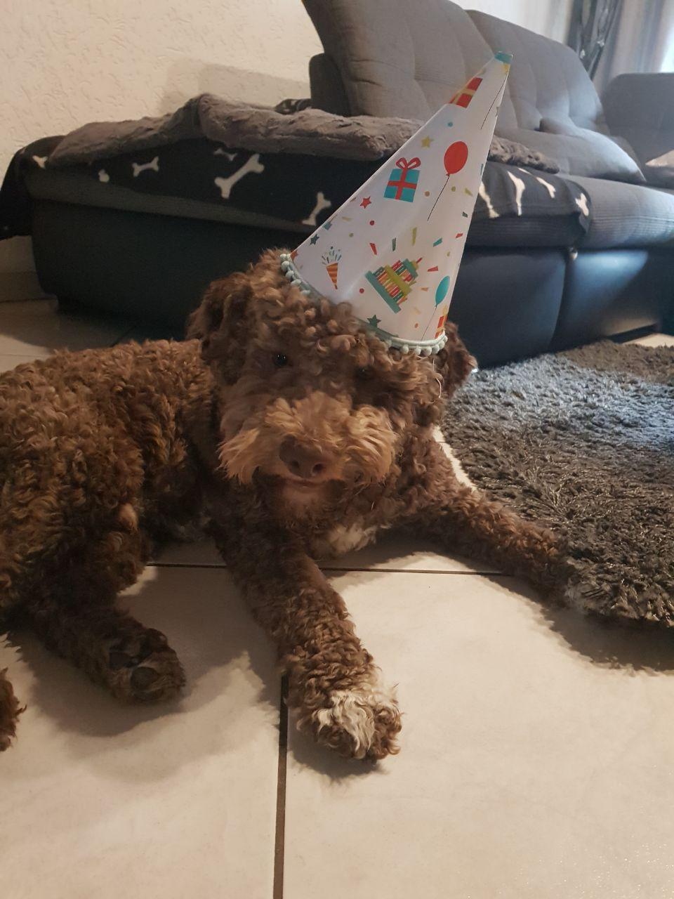 Happy Birthday Amaretto