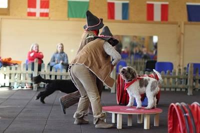 in Oberammergau, Hundesporthotel Wolf
