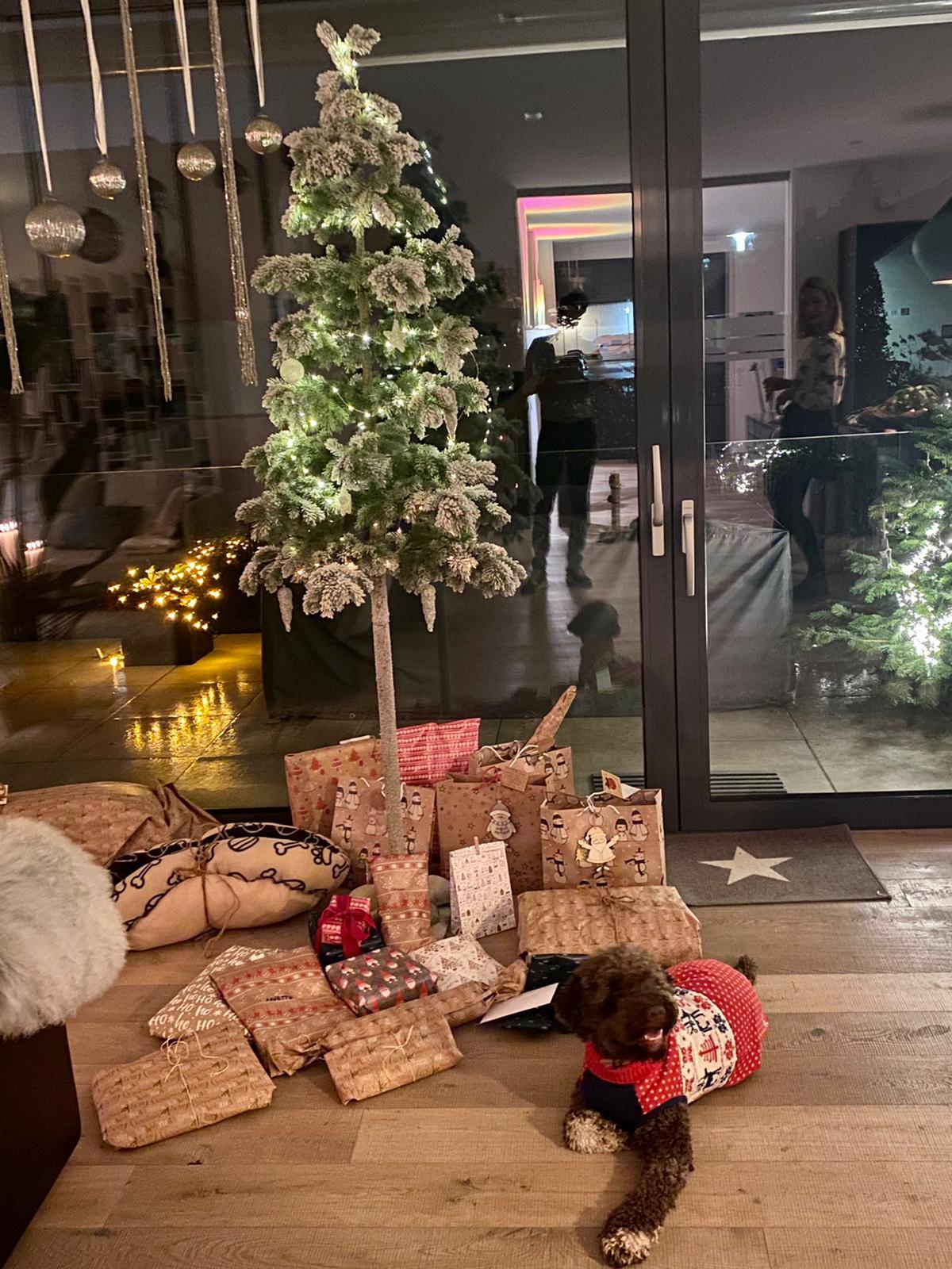 auch Charlie schickt Weihnachtsgrüsse