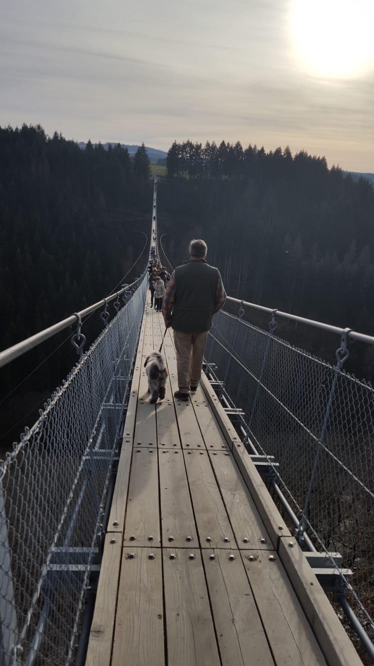 tapfere Paula - Geierley Hängebrücke