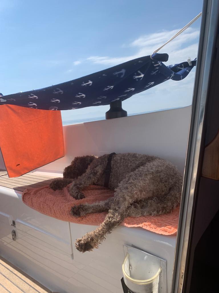 Nelly relaxed auf ihrer Yacht