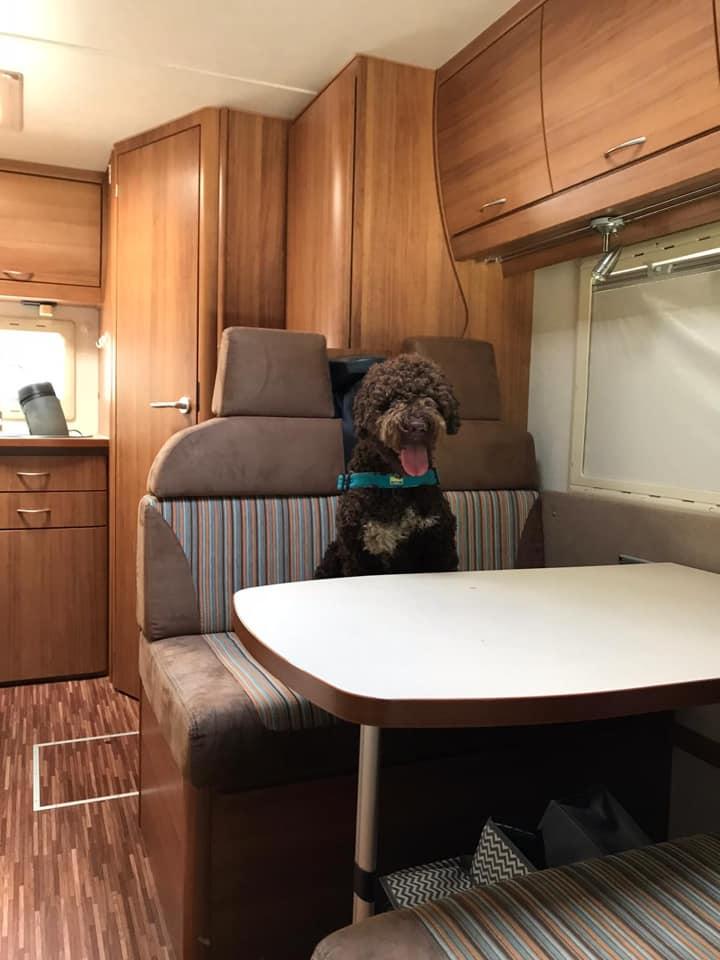 Chef ist an Bord, Urlaub kann los gehen