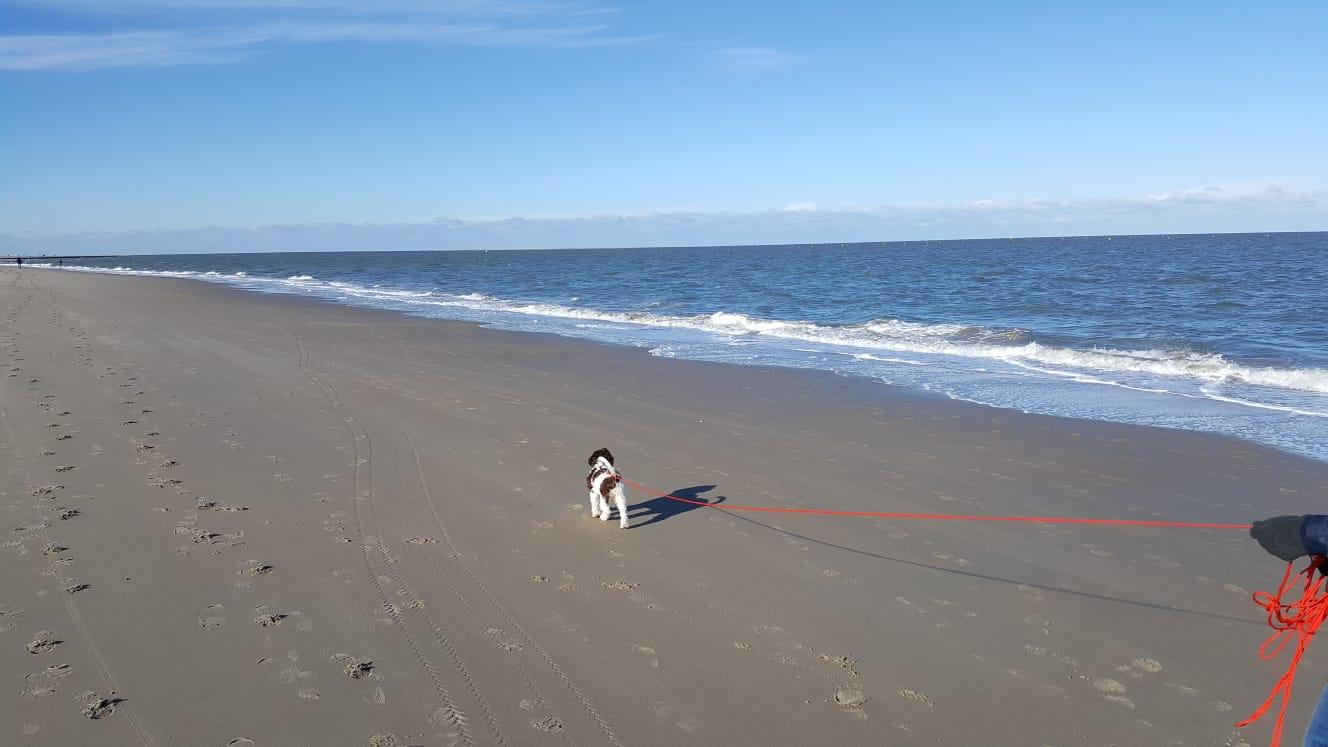der Strand, das Meer und ich
