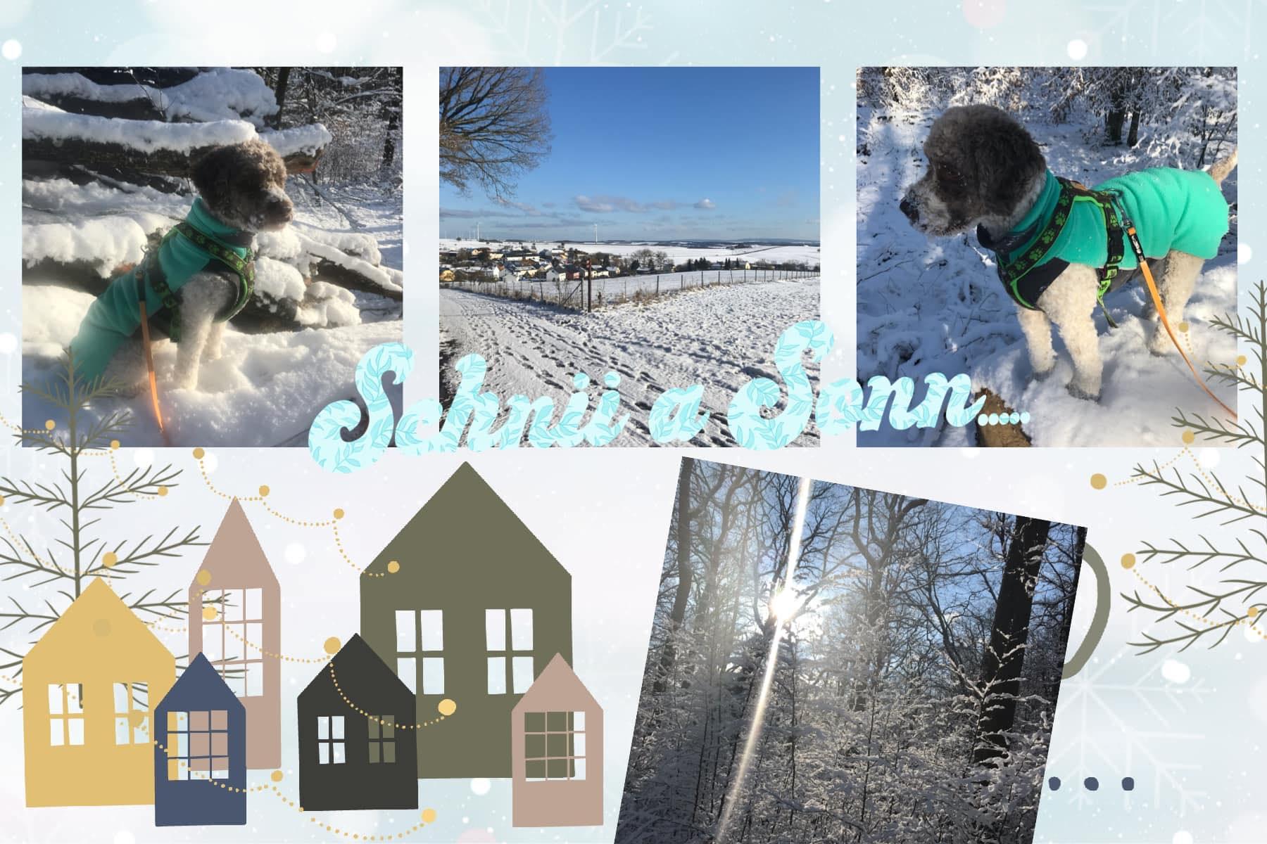 Fina hat Spass im Schnee
