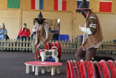 Jad-Dogs Aufführung in der Fun Klasse