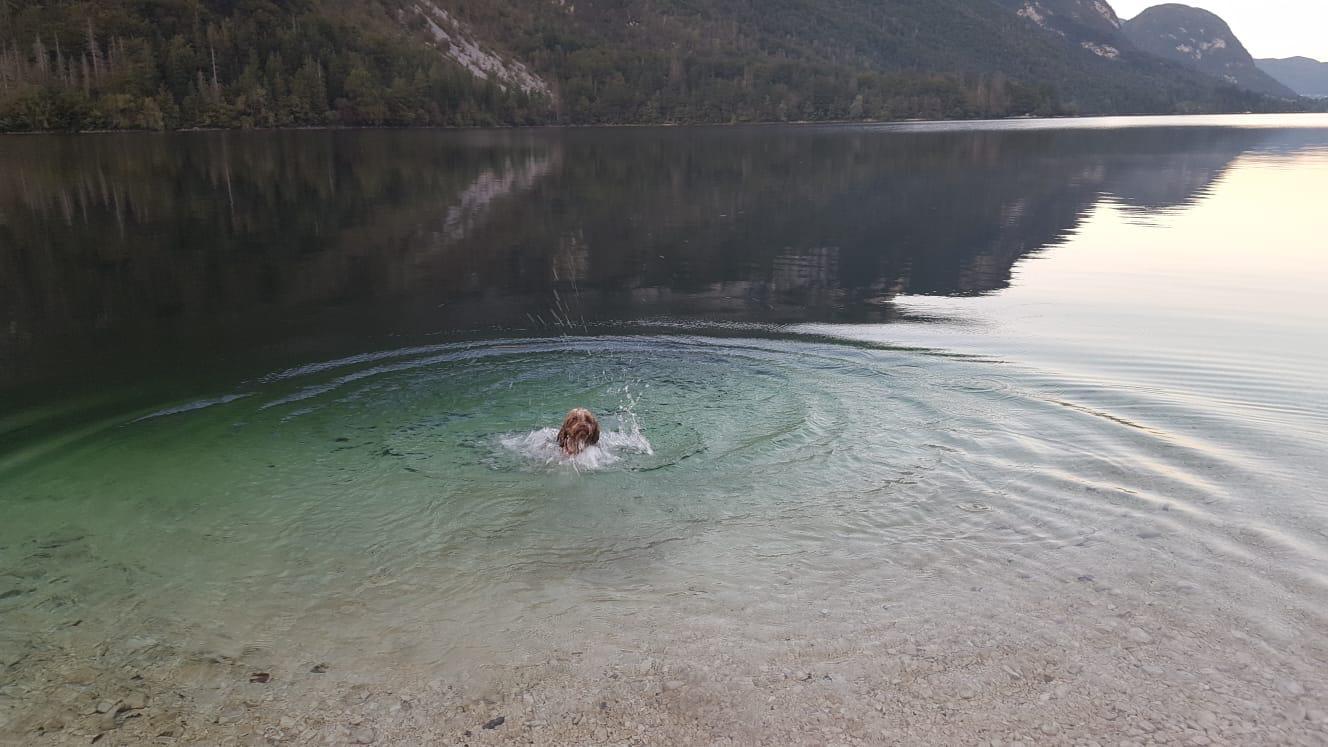 jetzt eine Runde schwimmen