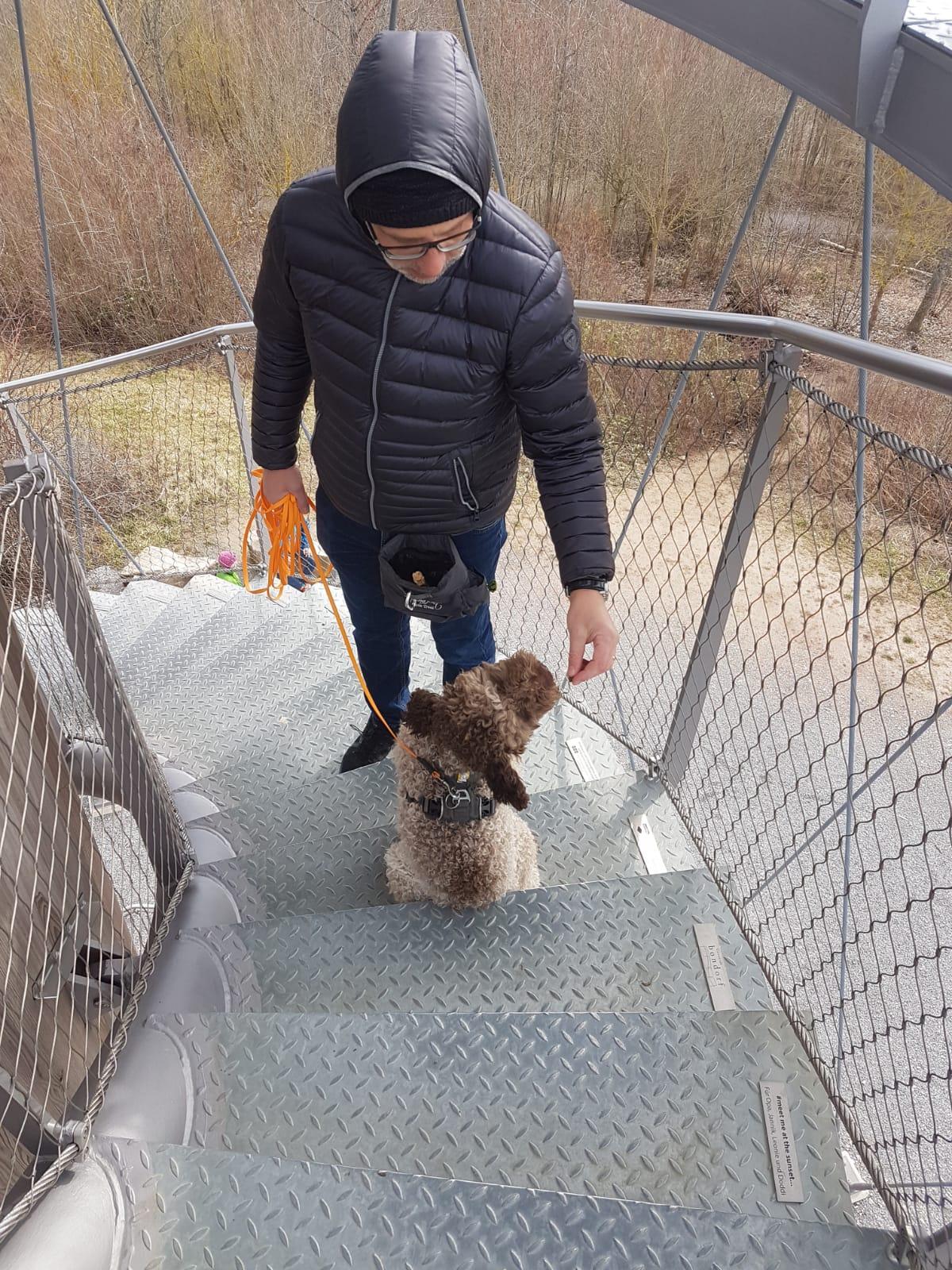 Bo meistert die 348 Stufen rauf und wieder runter