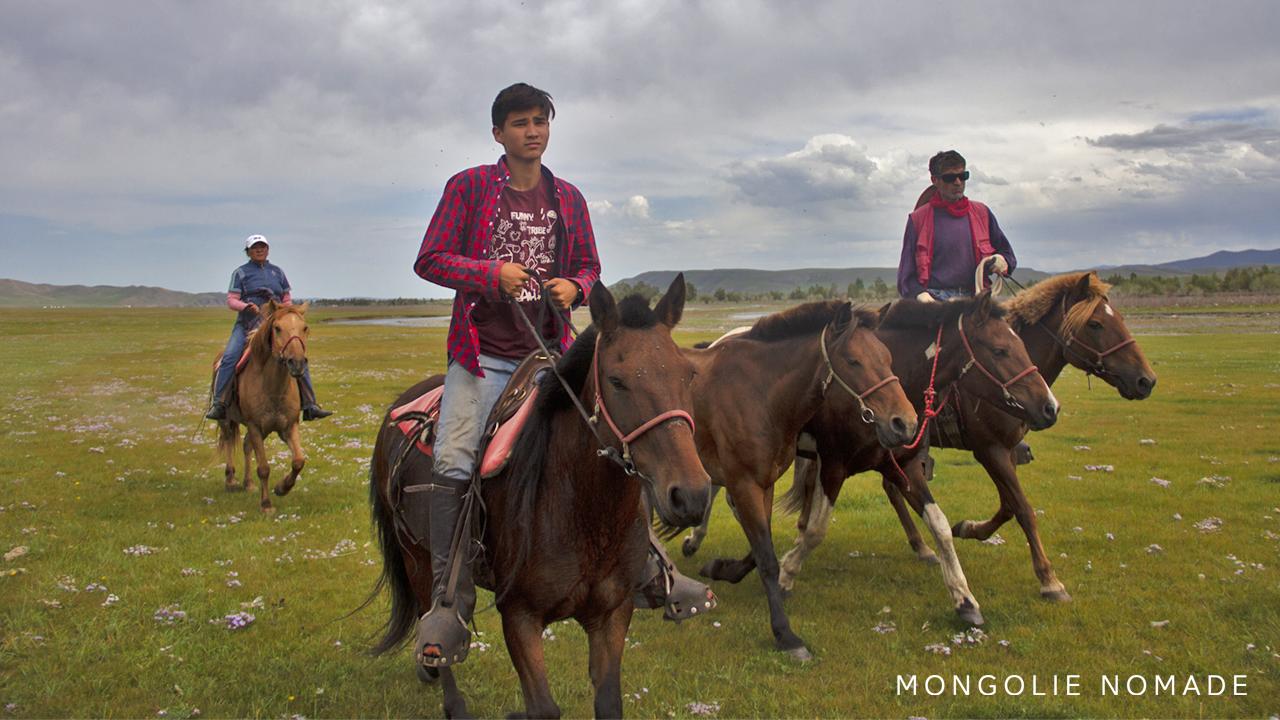 Transfert des chevaux entre deux campements
