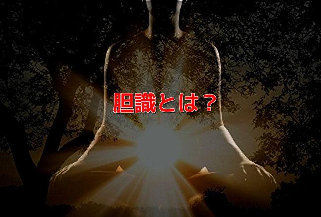 胆識(たんしき)とは何か?武道で胆力を鍛え、胆識に至る。