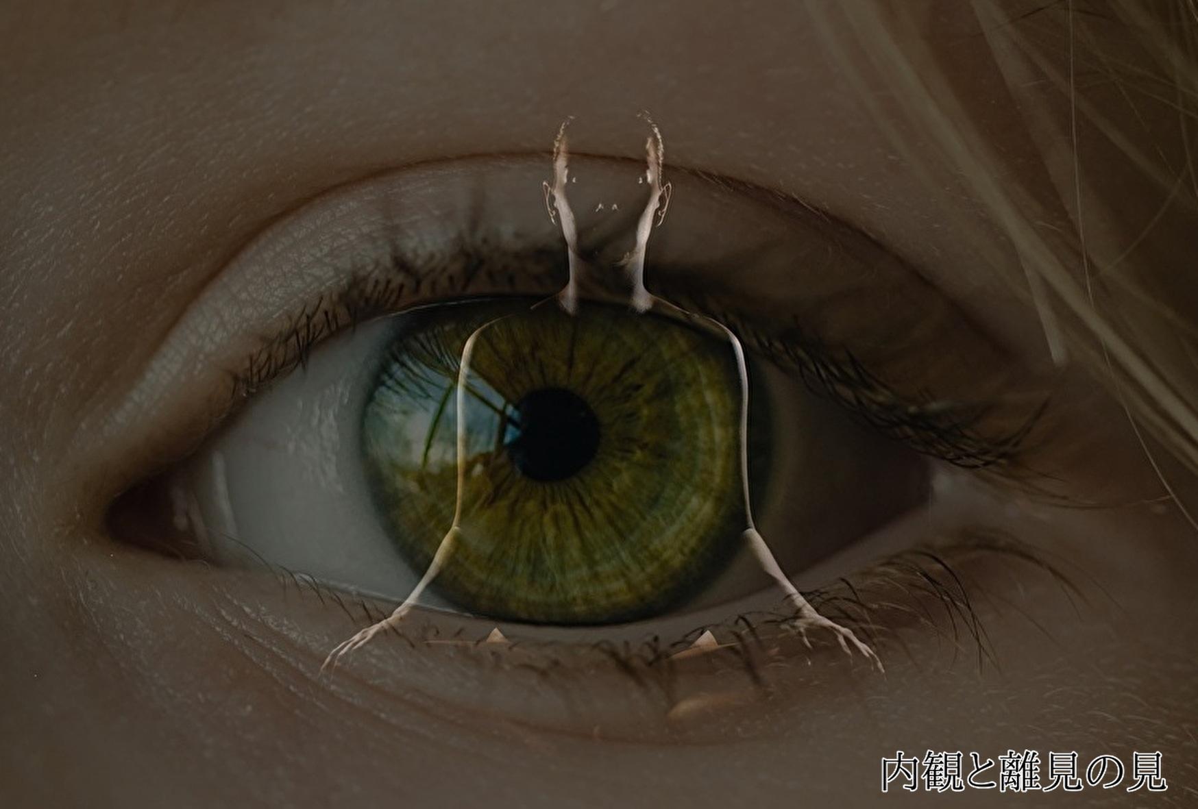 合気道における「内観」と「離見の見」の二つの自己観察の必要性