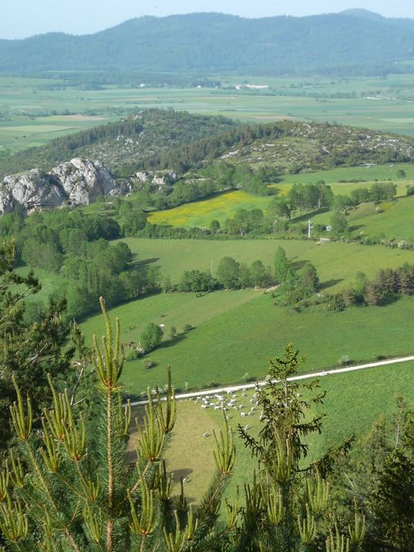 Depuis le Pic des Sarrasis à Roquefeuil
